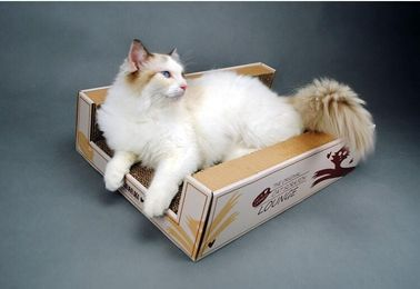China Various Size Cat Scratch Box Cardboard Silver Vine Practice Strong Claws supplier